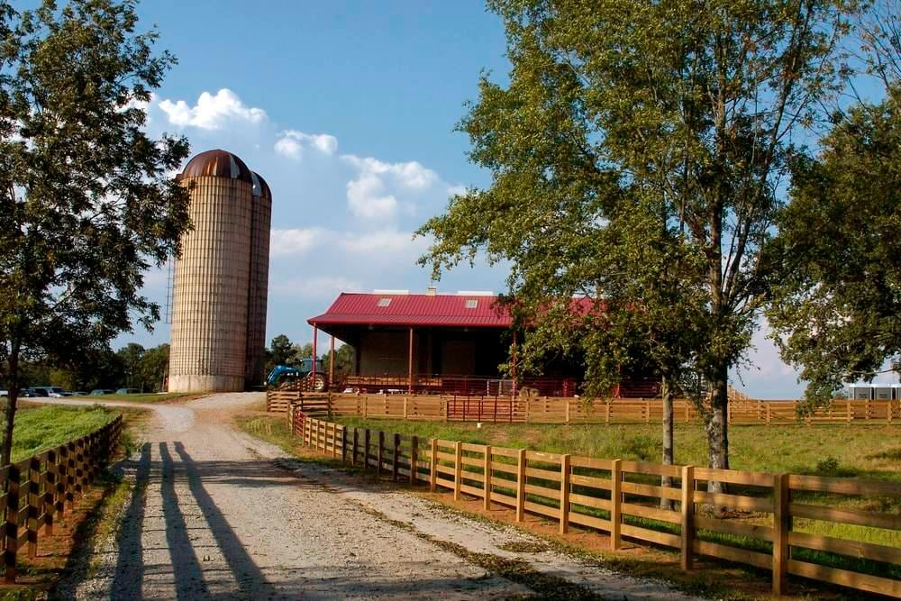 Southern Bell Farms