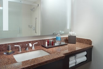Guest Room King Bathroom