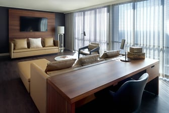 Executive Suite – Living area/sofa bed