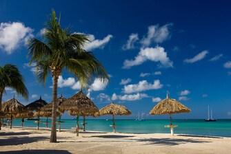 Aruba Vacation Palm Beach