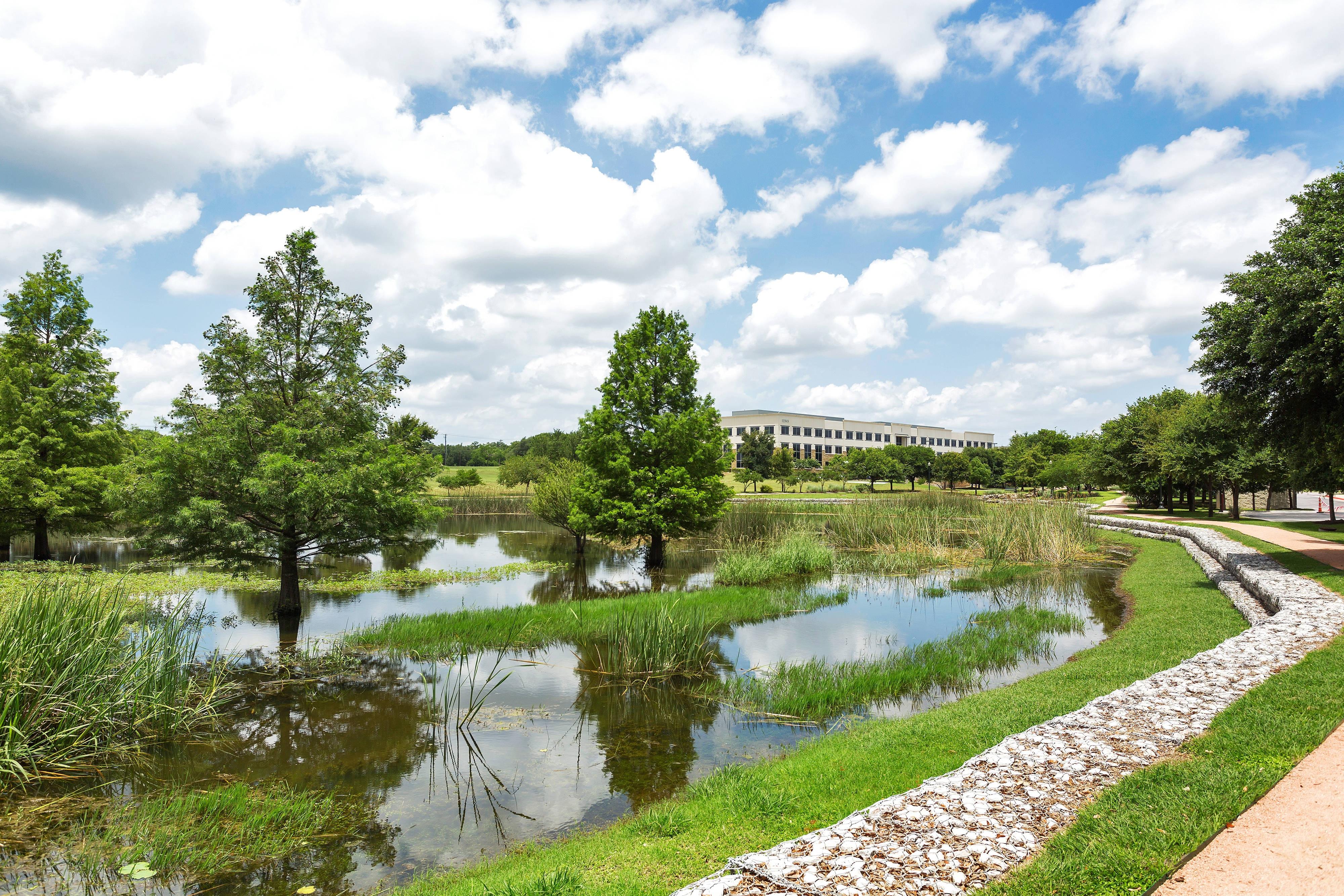 Park Central Pond