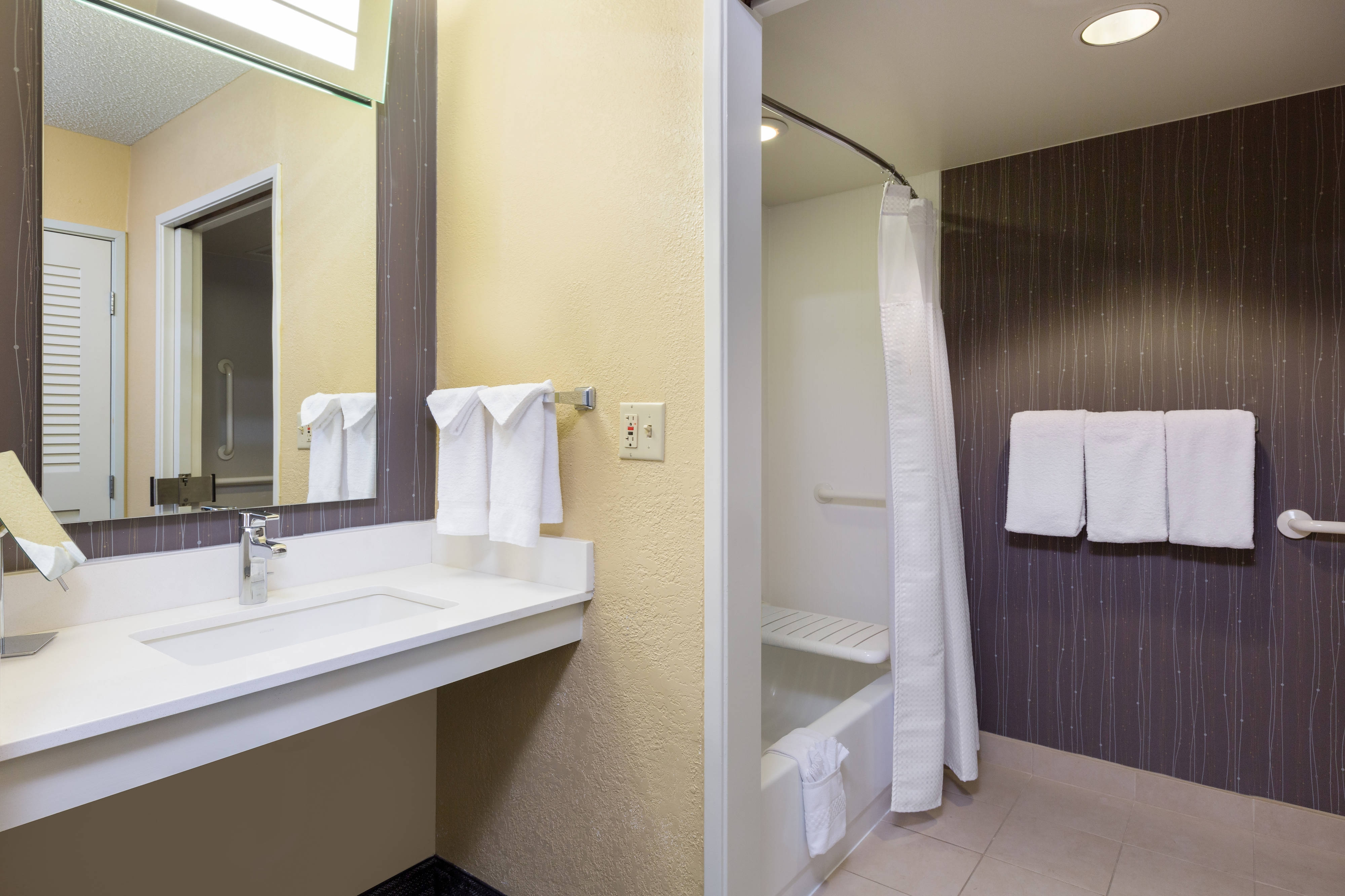 North Austin Accessible Hotel Bathroom