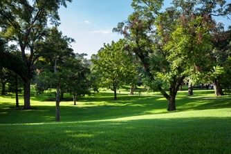 Texas State Capitol Grounds