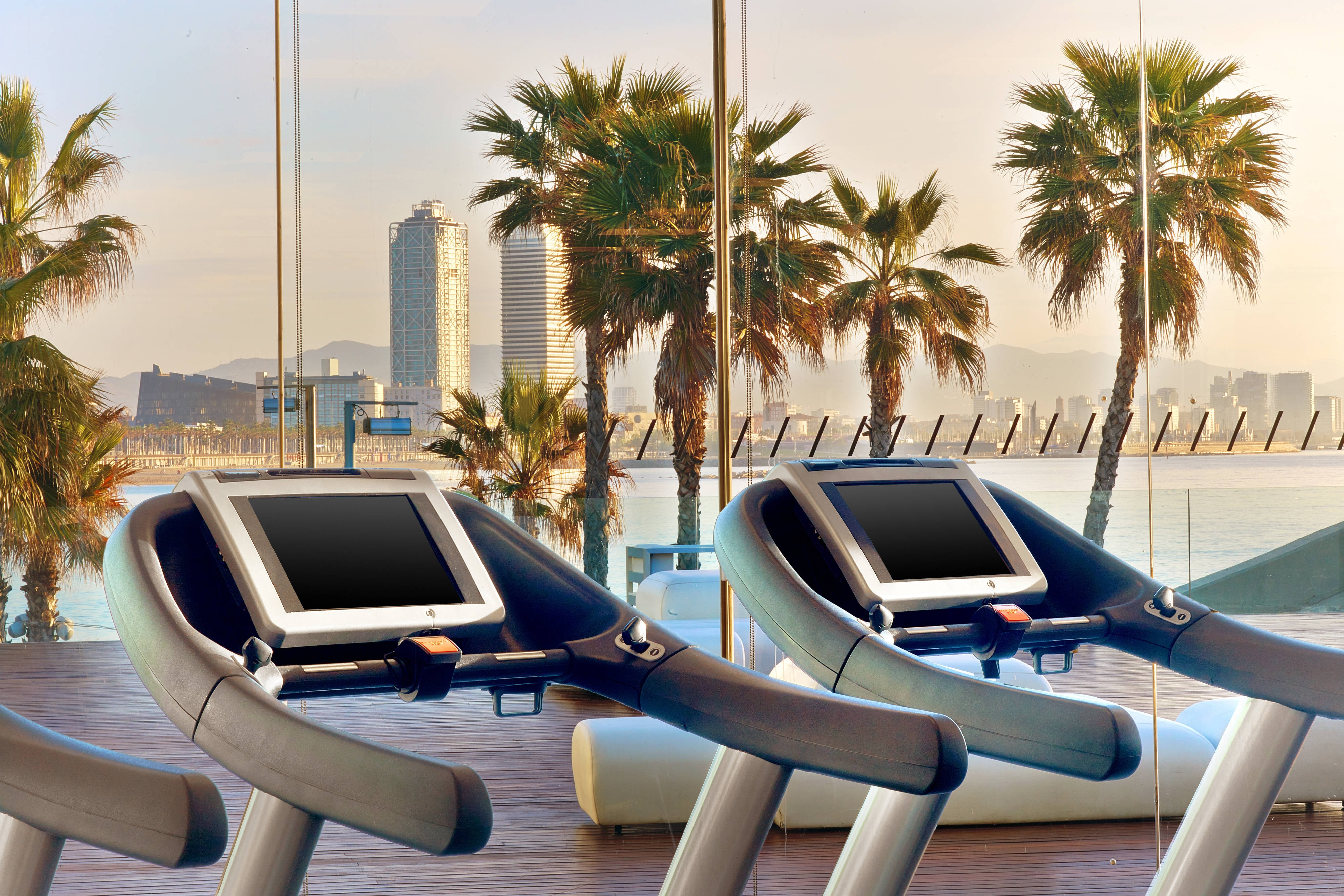 FIT treadmills with sea View