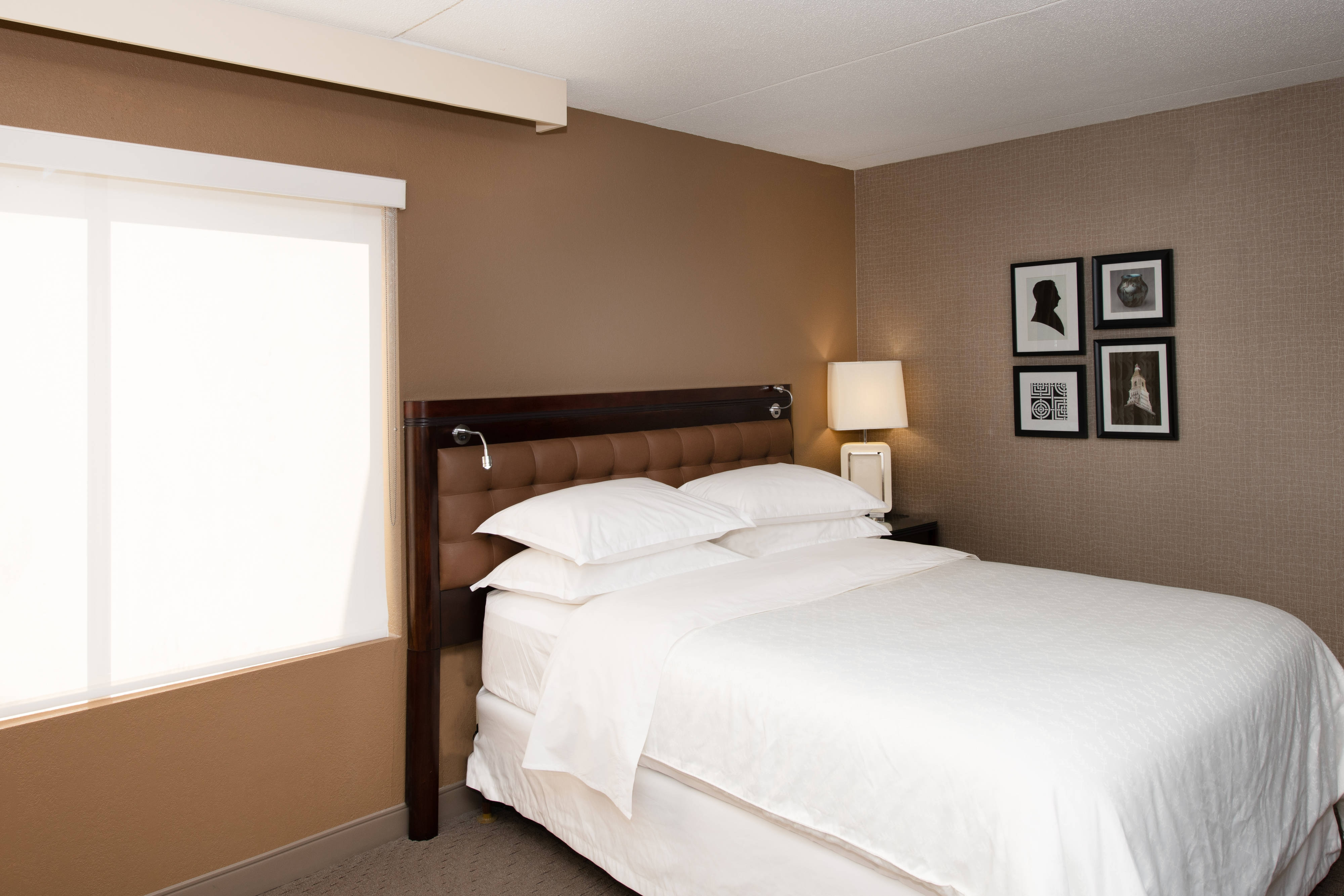 Queen Traditional Accessible Guest Room