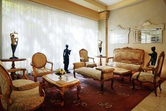 Napoleon Salon