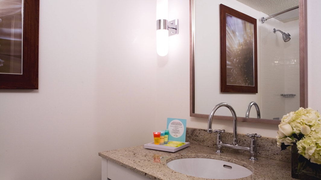 Guest Bath Vanity & Amenities