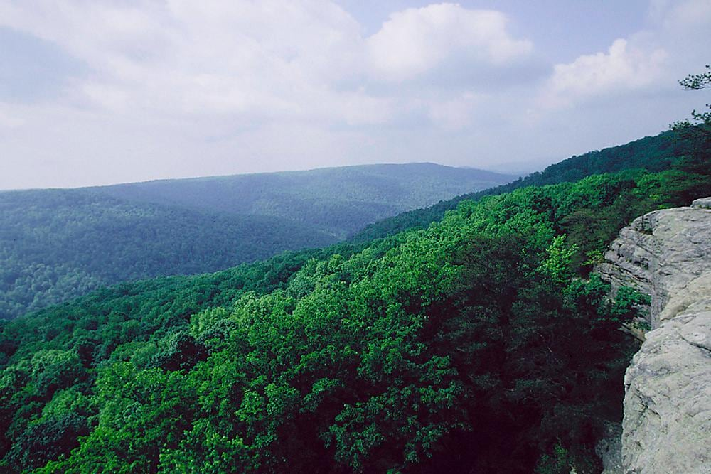 Scenic View in Montery Tennessee