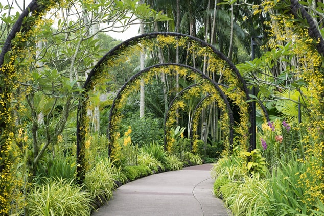 Sigourney Cheek Literary Garden