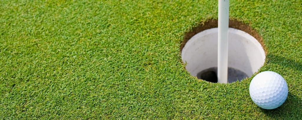 Renaissance business hotels feature golf courses
