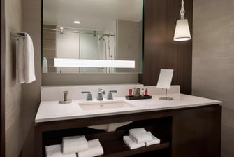 Buffalo Marriott HARBORCENTER Guest Bathroom