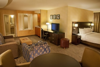 King spa guest room