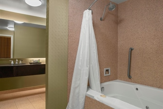 Multilevel Suite - Bathroom