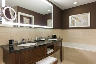 Chicago Hotel Room Bathroom