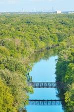 Des Plaines River View