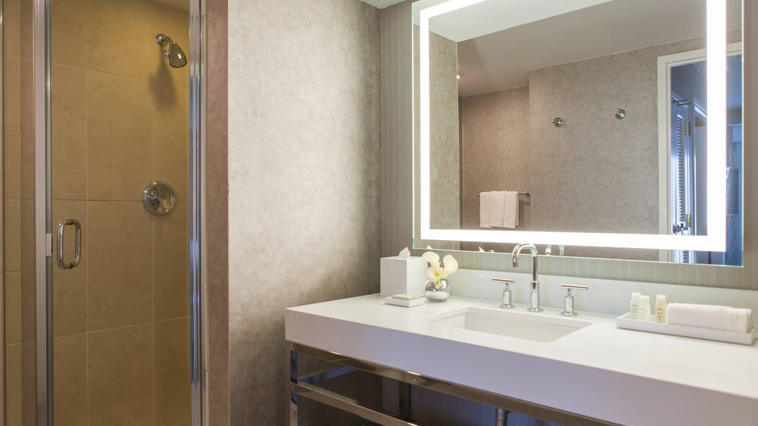 Chicago Hotel Suite Bathroom