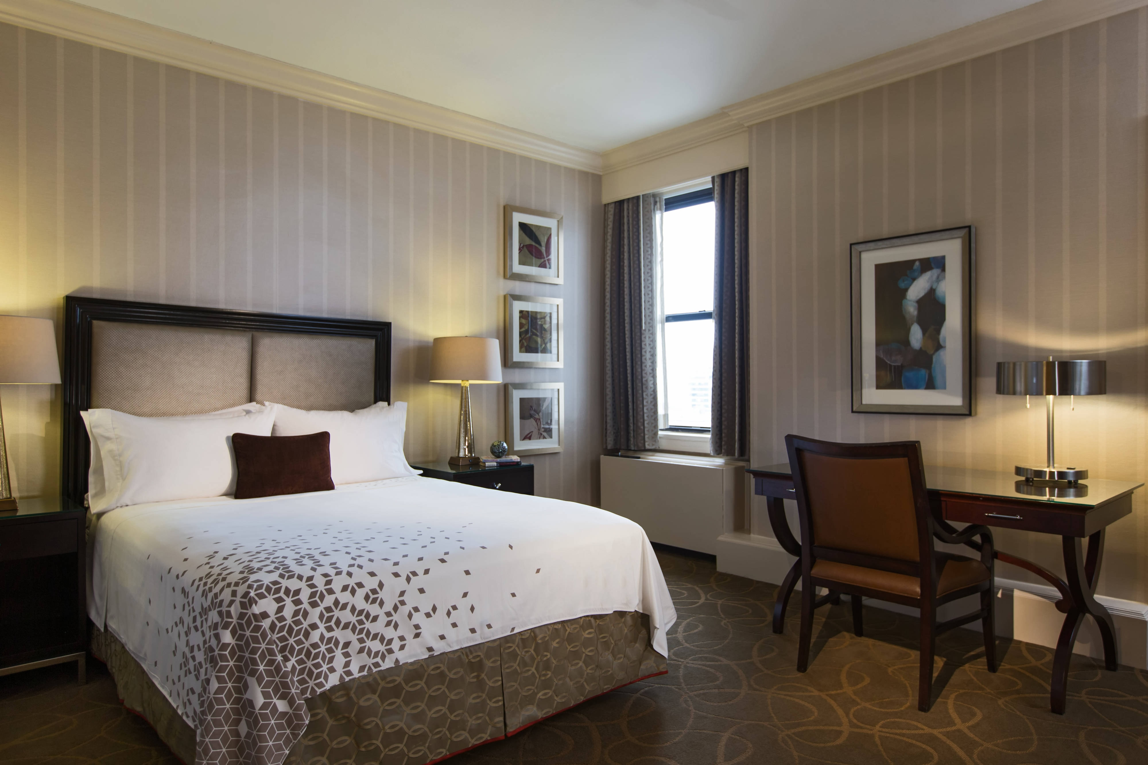 Queen Cozy Guest Room