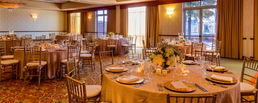 Wedding venues in charlotte renaissance charlotte suites hotel view photos junglespirit Images