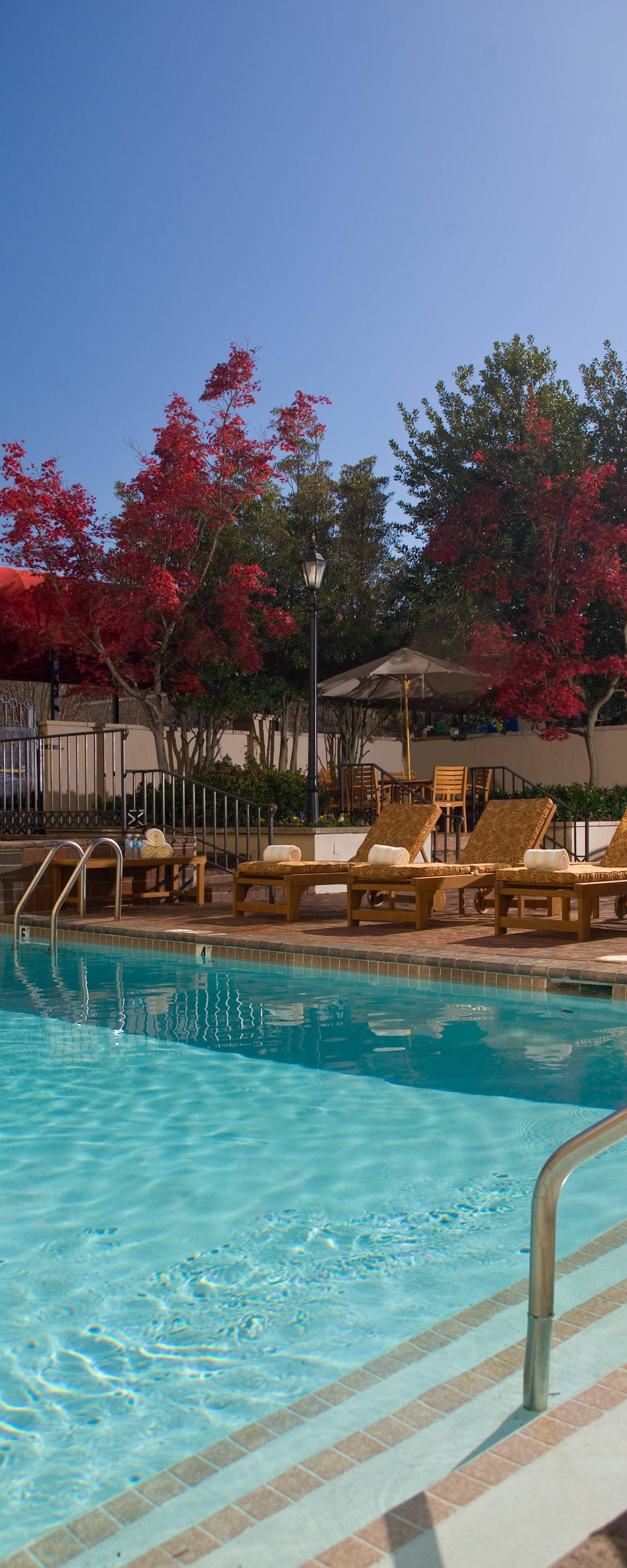 Hotels In Charlotte Nc With Indoor Pools Charlotte Marriott Southpark