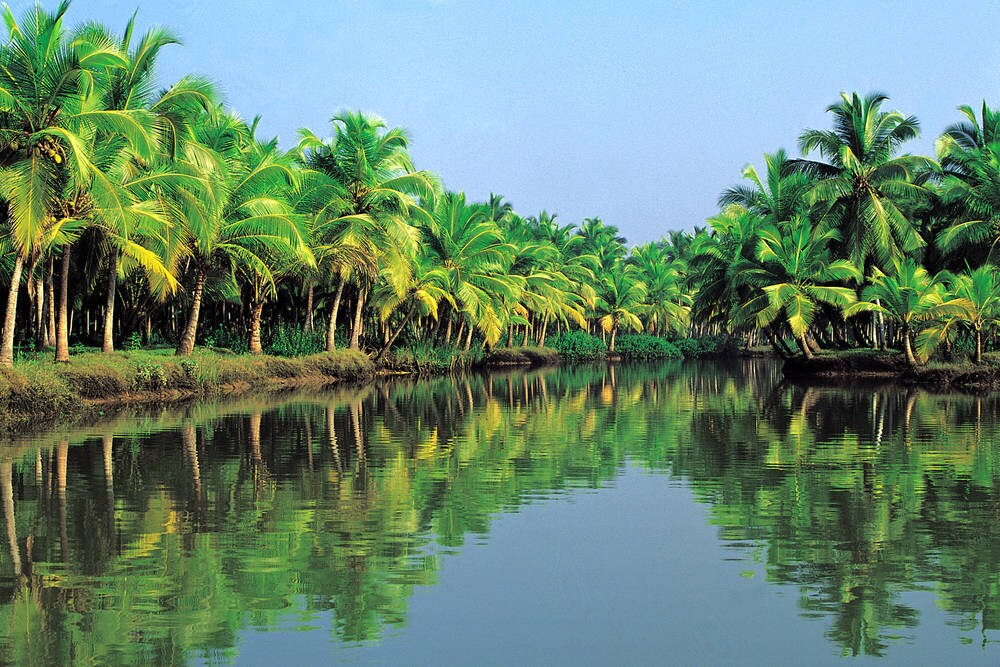 Kerala s natural beauty of Backwater Rivers and Coconut Groves