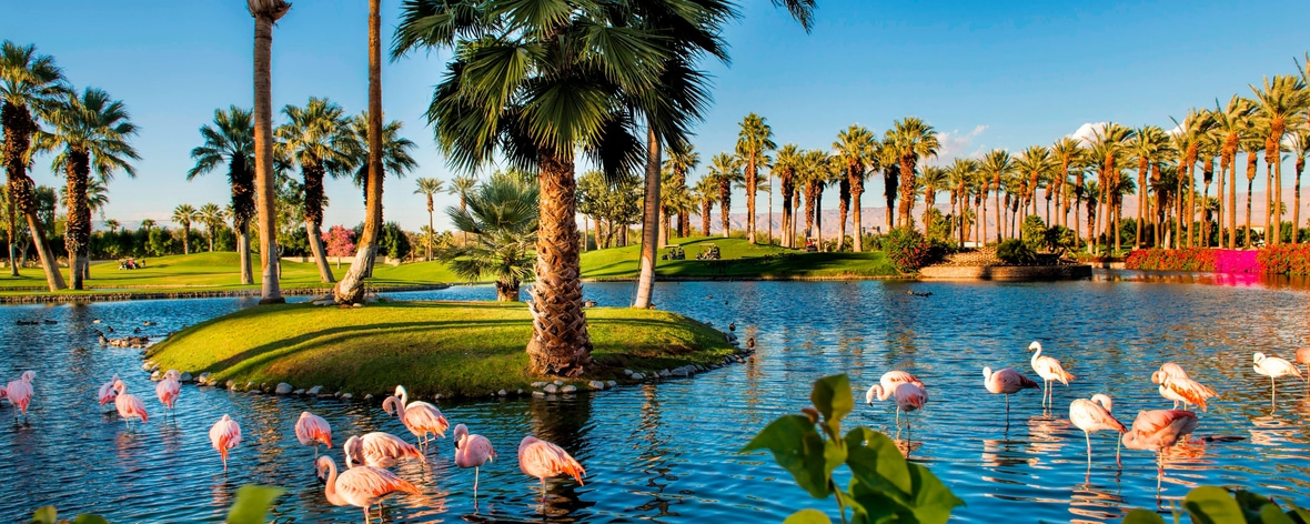 Palm Springs, CA Resort | JW Marriott Desert Springs Resort & Spa