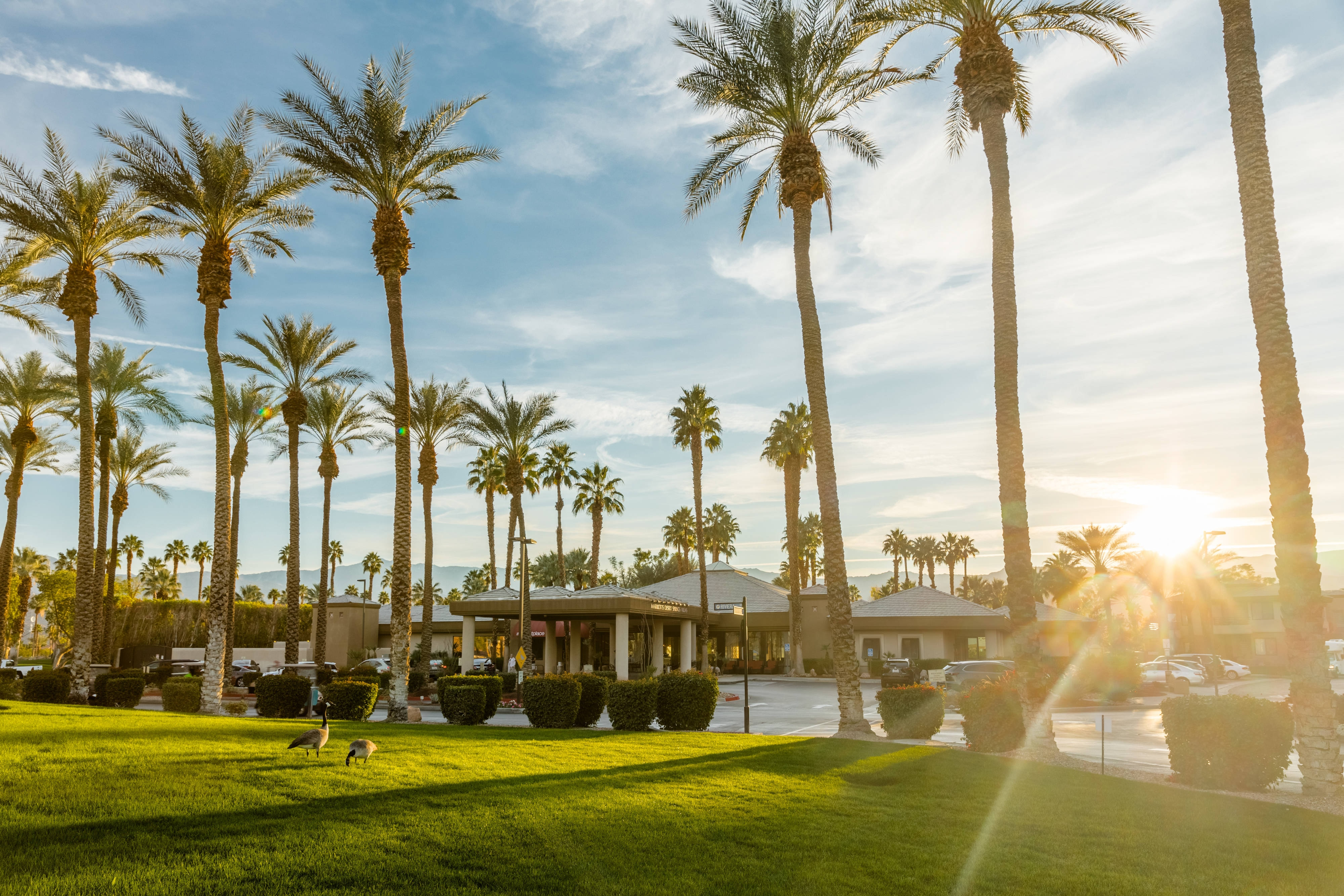 Family Vacation Rentals In Palm Springs Marriott S