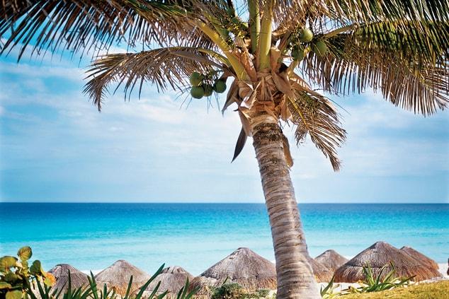 Local beach in Cancun Mexico