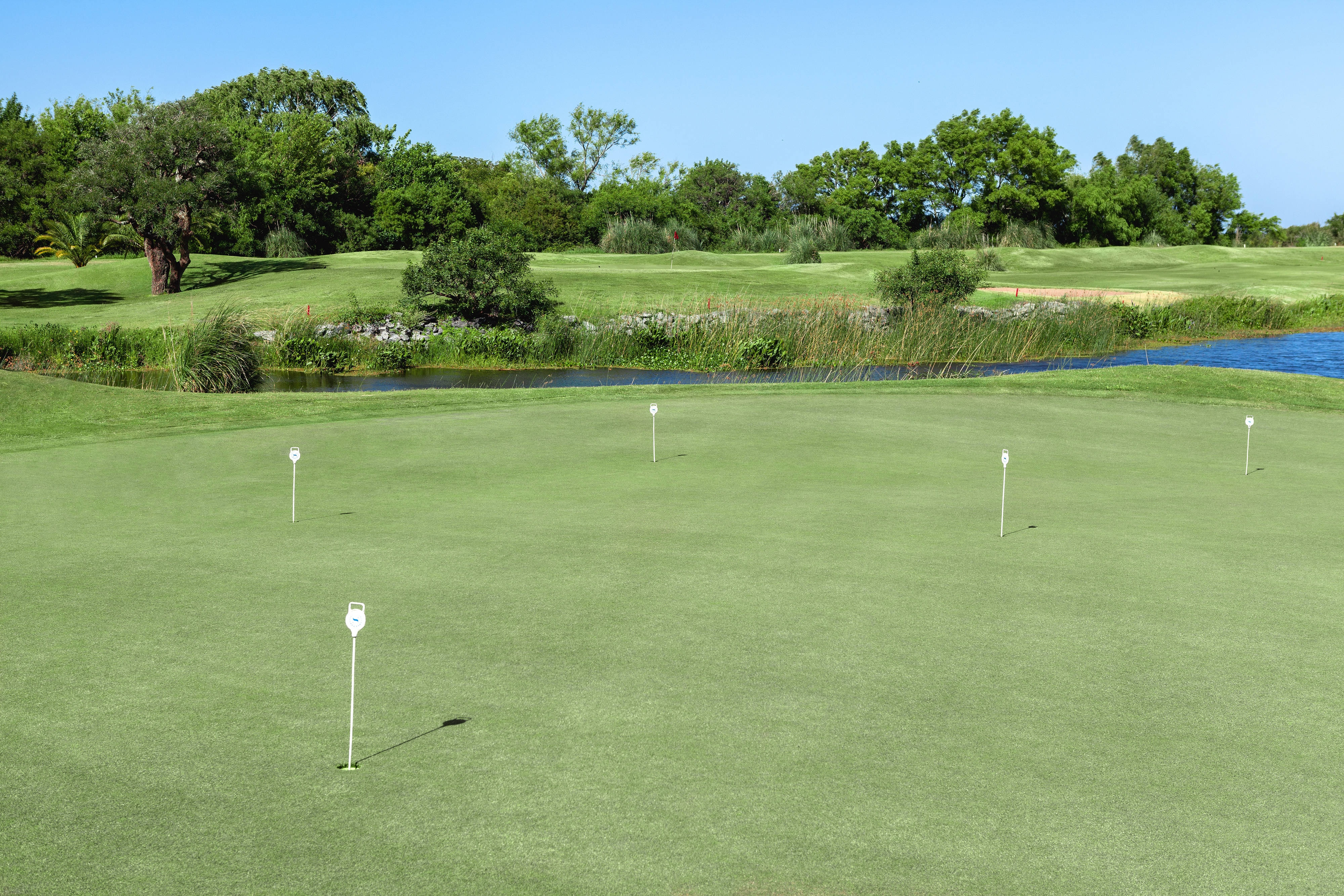 Golf - Putting Green