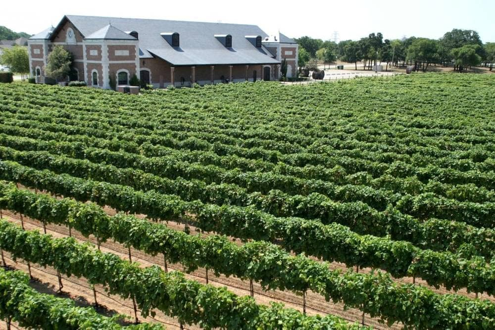 Grapevine Texas Wineries