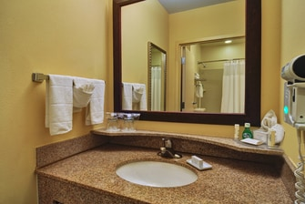 Irving hotel suite bathroom