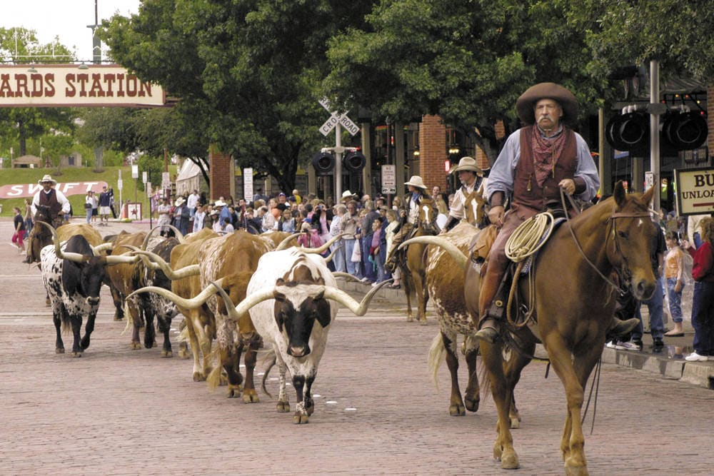 Stockyard Cattle Call