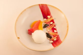 Citrus and berry symphony sorbet
