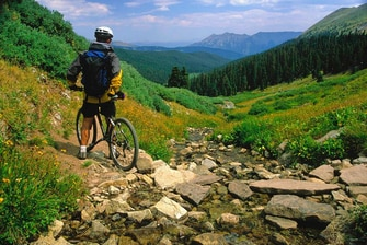 Mountain Biking