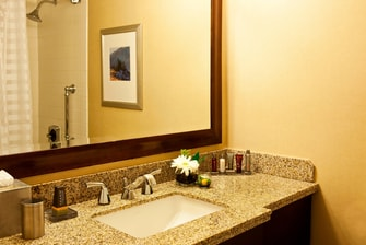 Golden, CO, Hotel Guest Bathroom