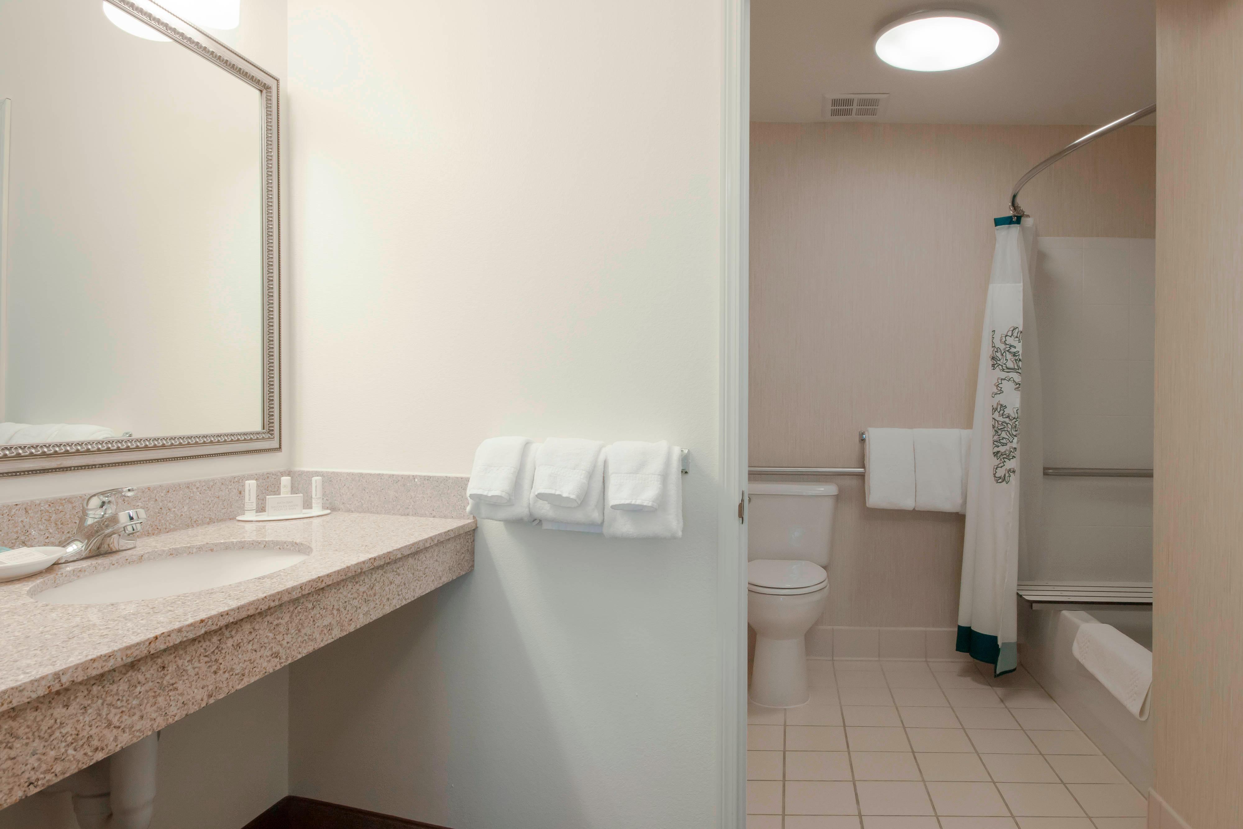 Des Moines Hotel Accessible Bathroom