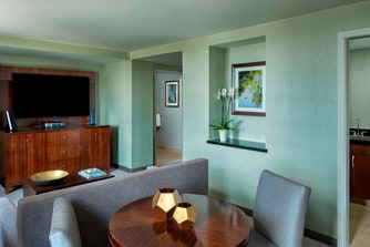 Luxury Suite - Living Area