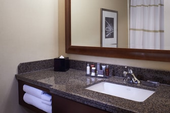 Detroit Hotel Suite Bathroom