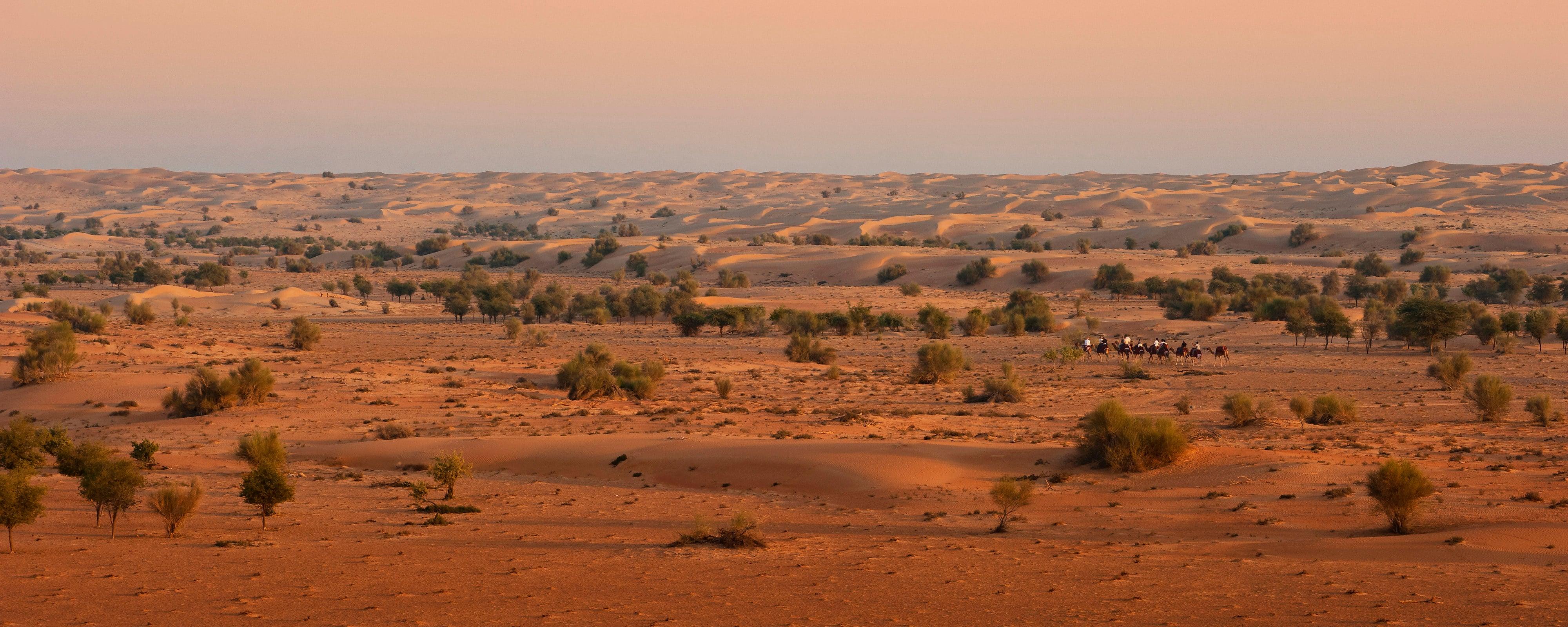 外観-砂漠の眺め