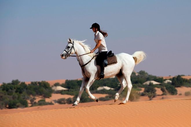 Desert Activities - Horse Riding