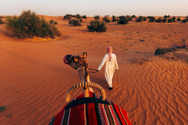 Desert Activities - Camel Trek