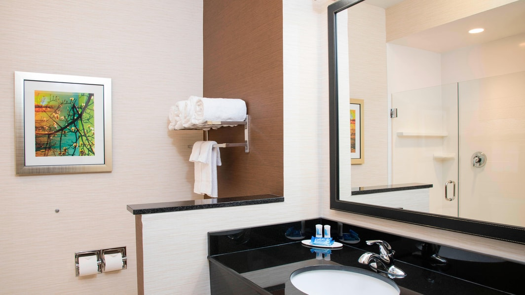 Fairfield Inn & Suites Fredericksburg Guest Bathroom