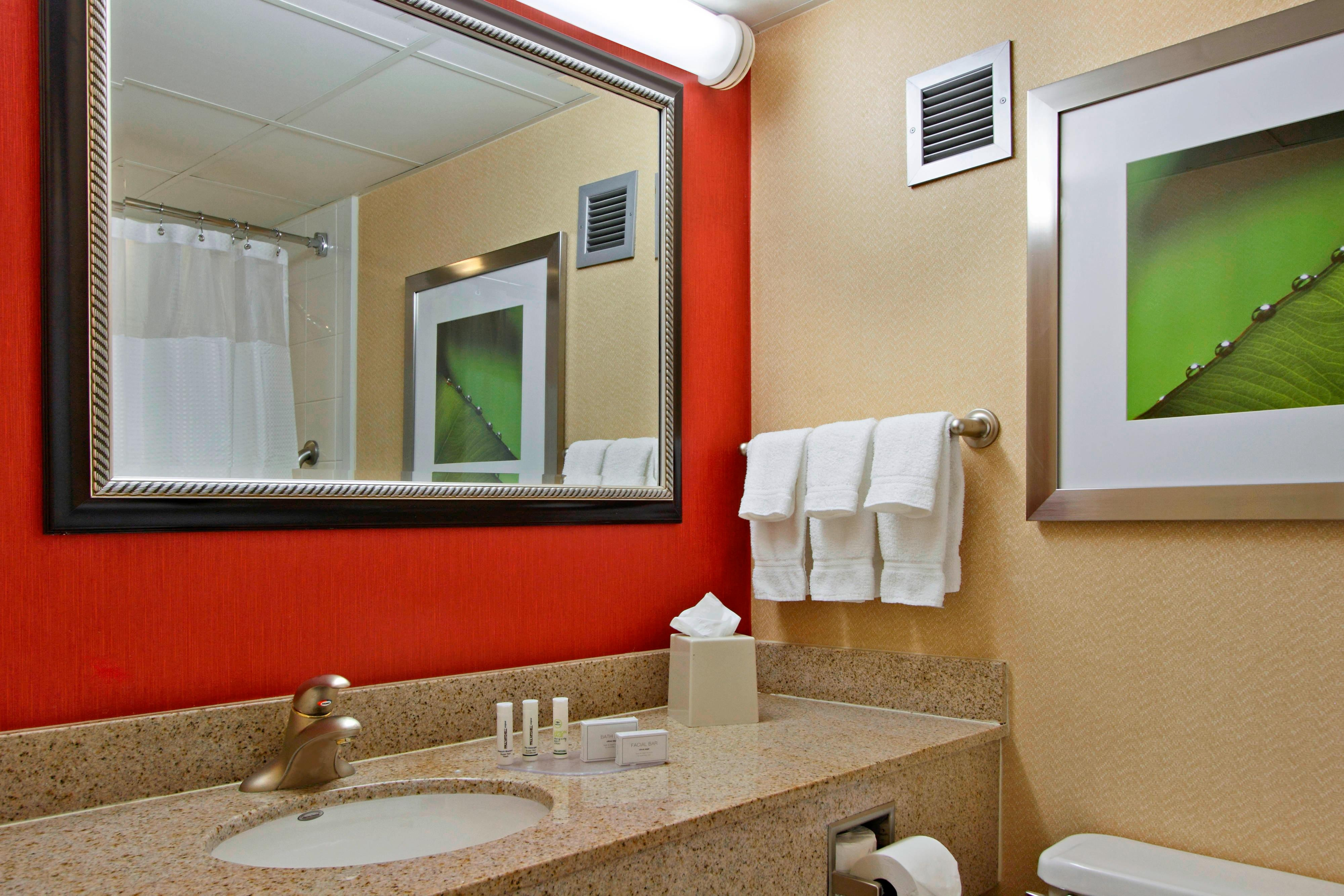 Mt Arlington hotel guest bathroom