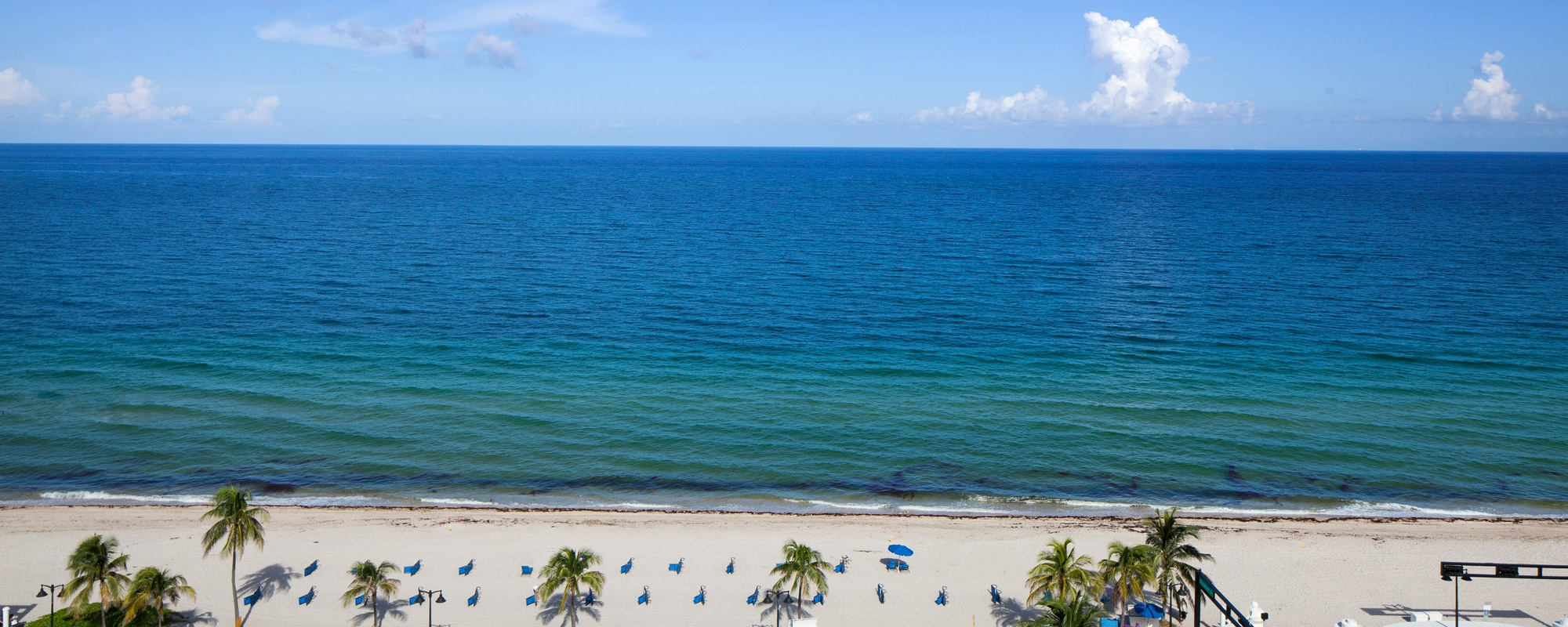 Luxury Boutique Hotel In Fort Lauderdale W