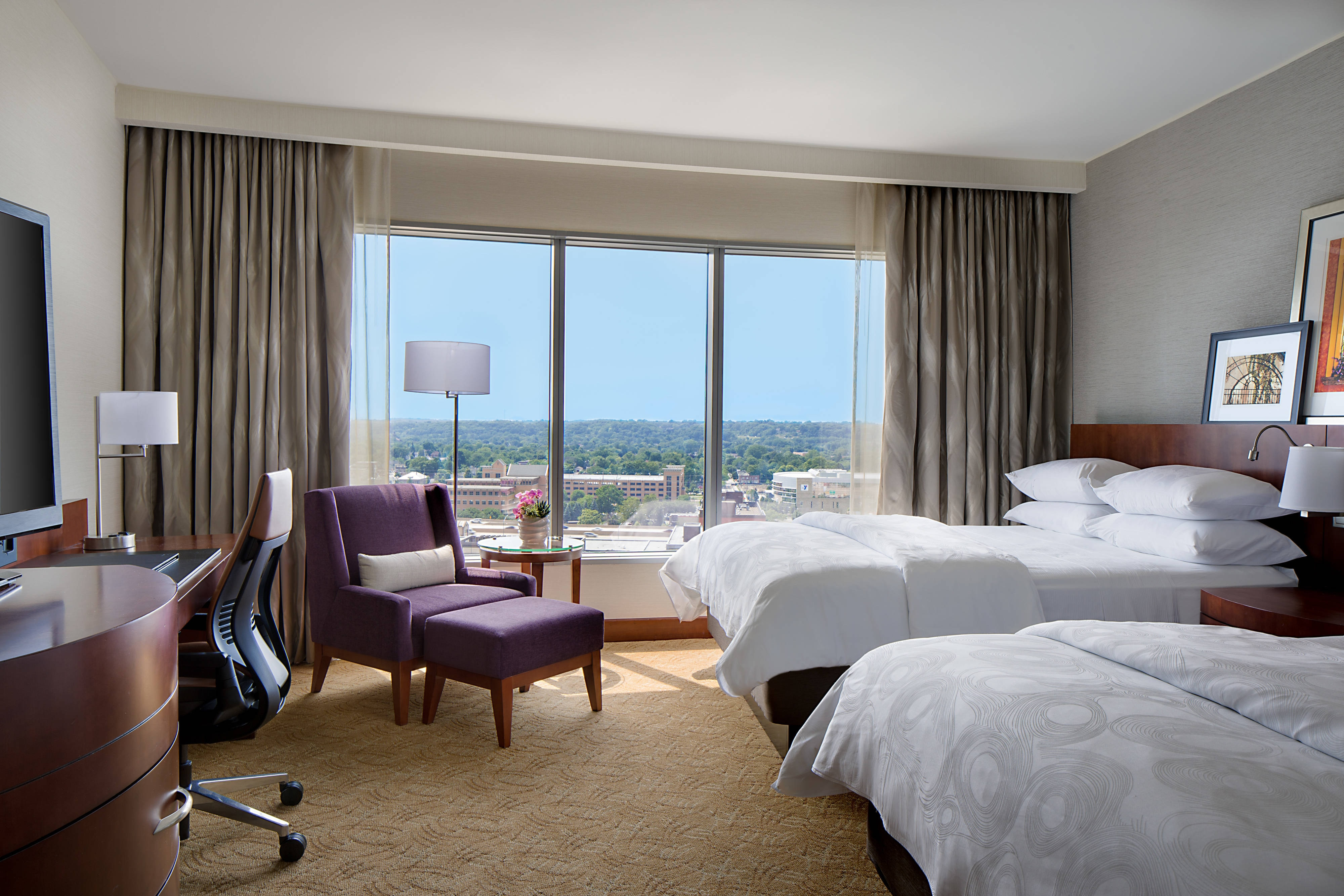 Queen Guest Room With View