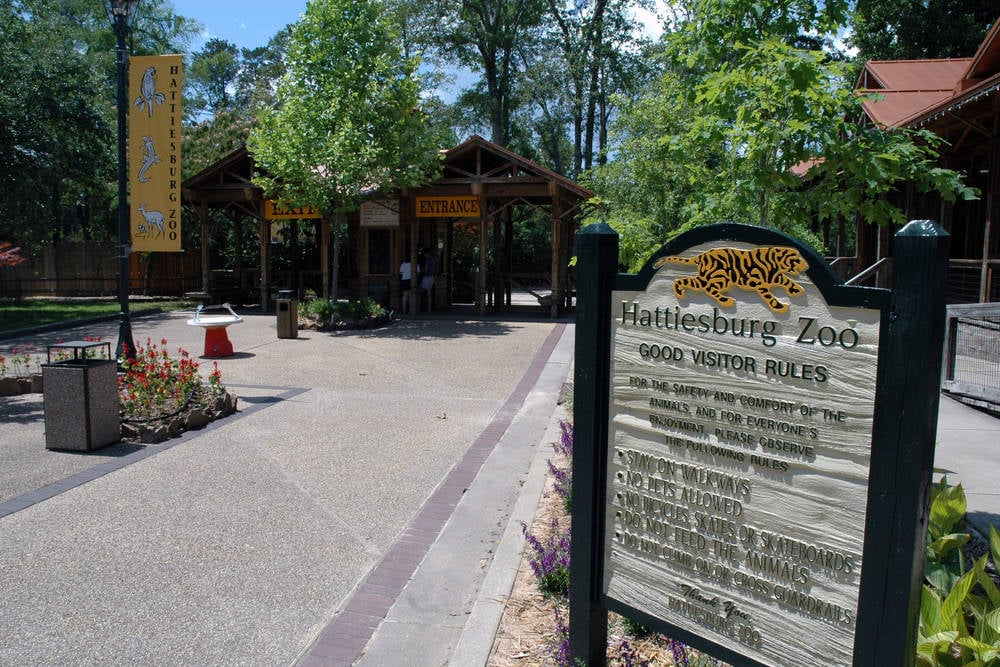 Hattiesburg Zoo – Hattiesburg Courtyard