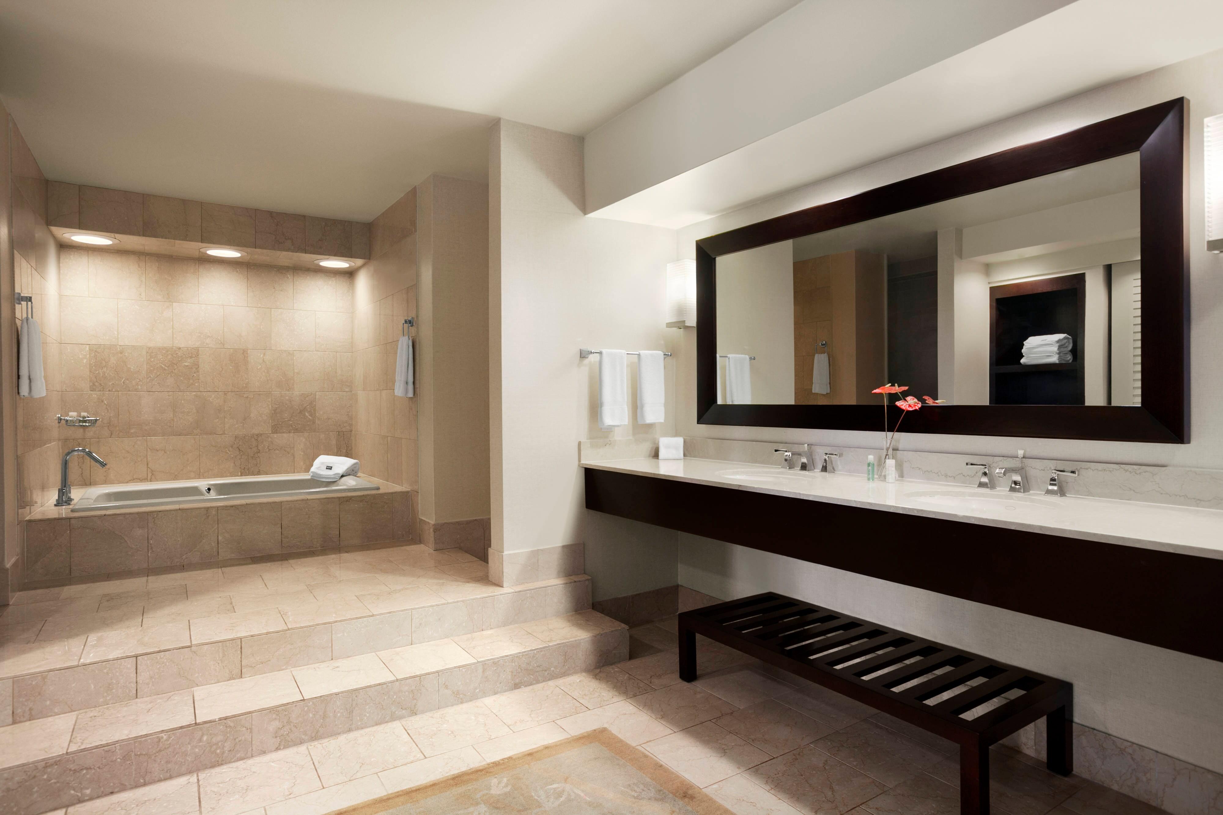 Luxury Suite - Bathroom