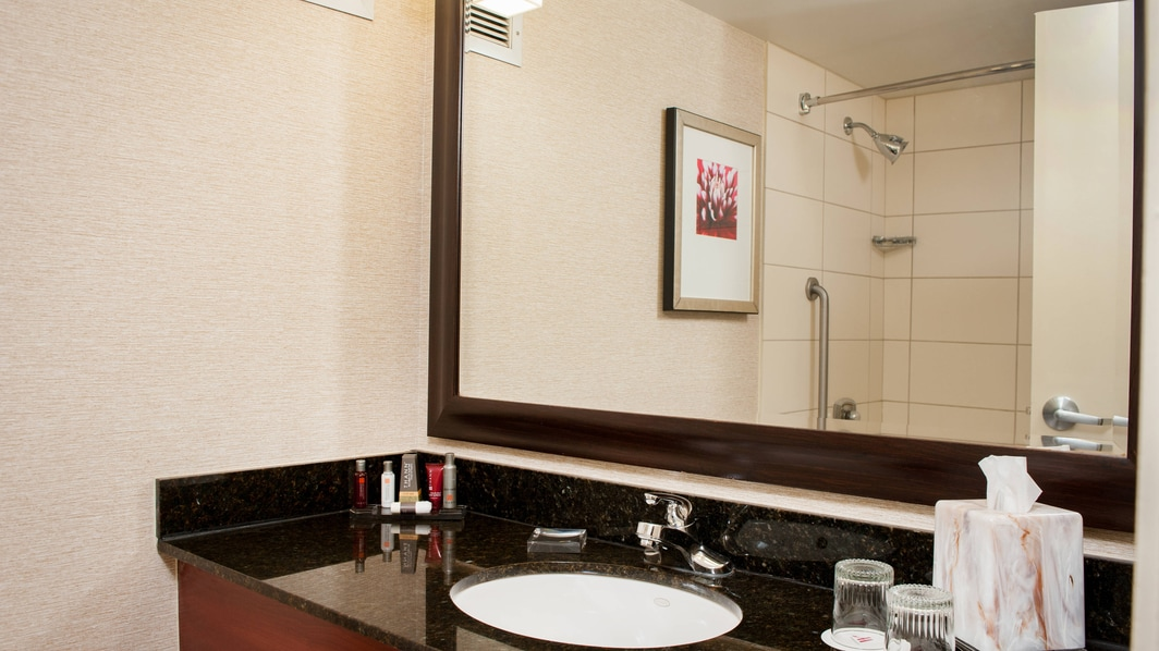 Houston, Texas Hotel Bathroom