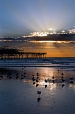 Playas de Galveston, Texas