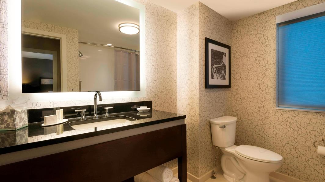 King One-Bedroom Suite - Bathroom