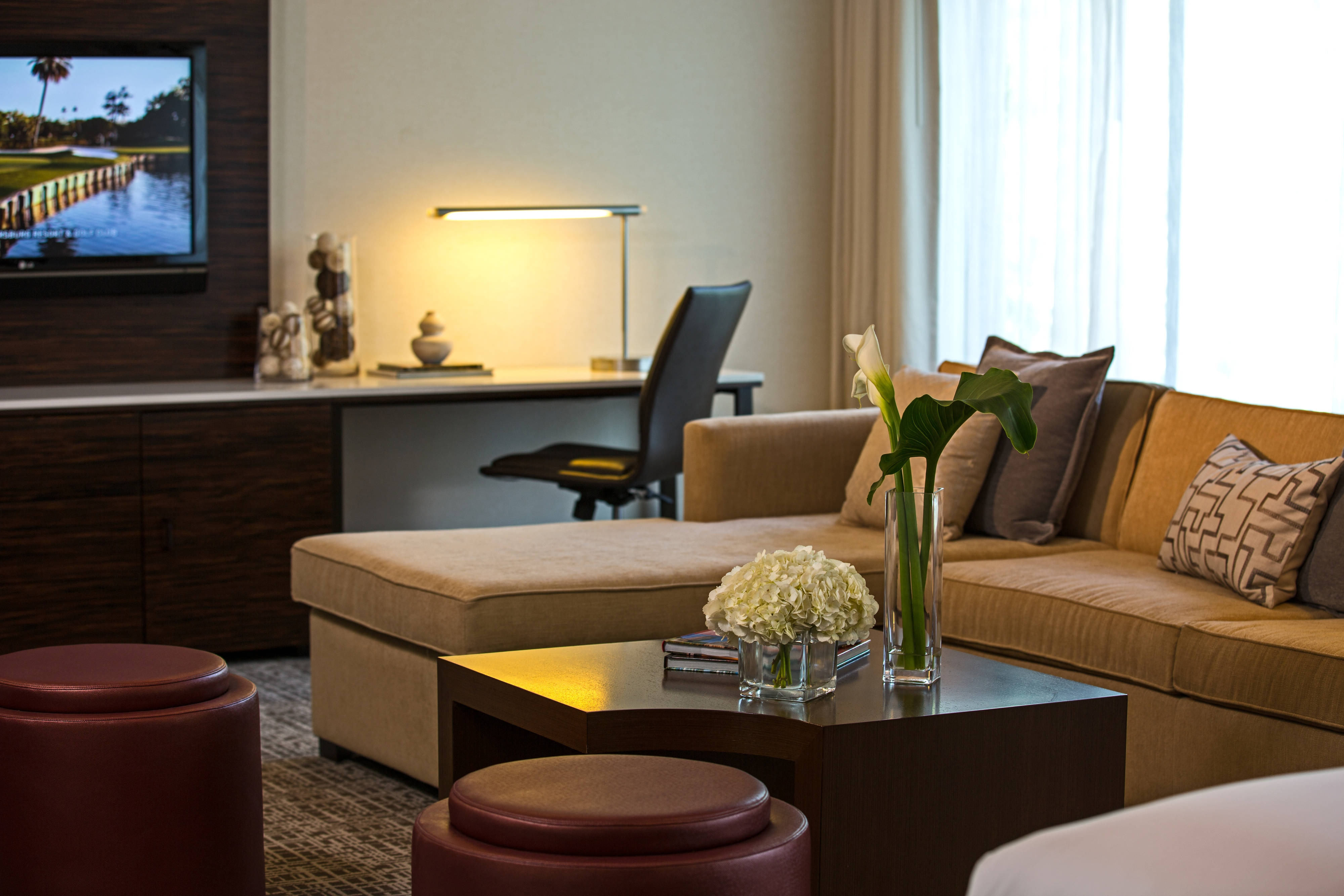 Executive Suite Living Area & Work Desk